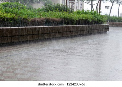 Pouring rain on a street of the city