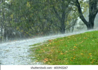 Pouring Rain in the Summer (blurred background)