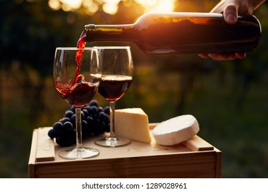 Pouring red wine into the glass in the vineyard at sunset
