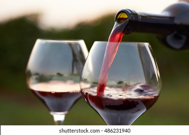 Pouring red wine into glasses in the vineyard at sunset