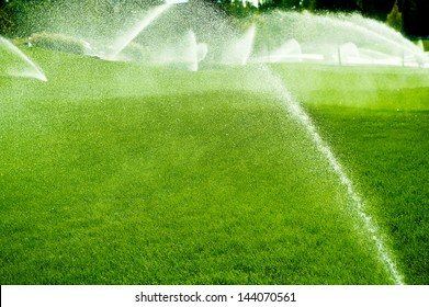 Pouring water of green lawn.design.landscape.Wet grass