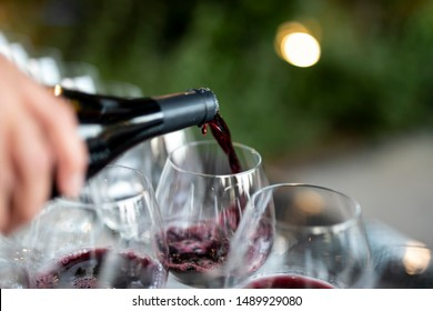 POURING WINE at bars resturant and weddings. also other social events.