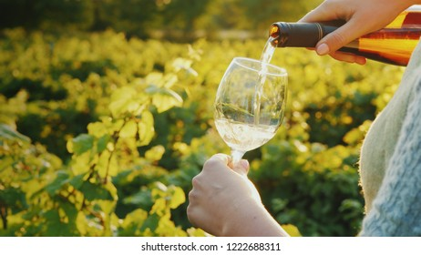 Pouring wine into a glass on the background of the vineyard. Wine tour concept