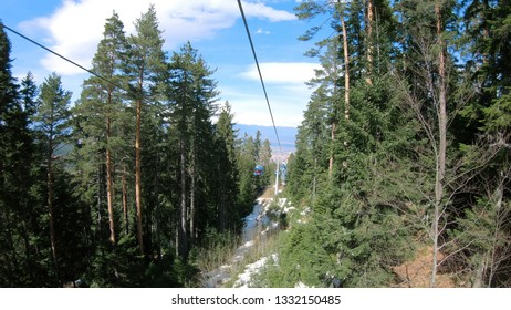 POV from gondola cabin ski lift ride between pine forest trees. It transport skiers and people from Bansko to Banderitsa ski slope station on Pirin mountain