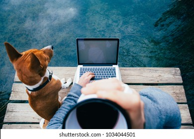 POV of millennial hipster man sipping on black american coffee while work on laptop remote out of office in park or forest, during vacation or lunch break. Types on keyboard code or project