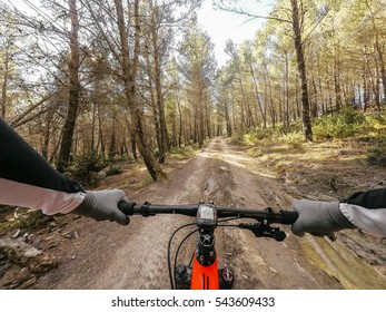POV mountainbiking action: enduro riding in the forest