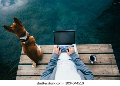 POV shot of remote office worker chill with dog on pier during camping trip or walk in park, workaholic addicted to internet, laptop and social media. Office escape to work on personal project