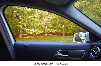 POV Through Car Window of Autumn Forest Outside