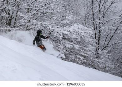 powder skiing in Hakuba, Japan