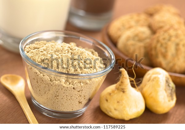 Powdered Maca or Peruvian ginseng (lat. Lepidium meyenii) in glass bowl with milk, chocolate drink, maca cookies and maca roots (Selective Focus, Focus one third into the maca powder)