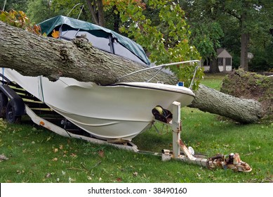 power boat smashed by fallen tree