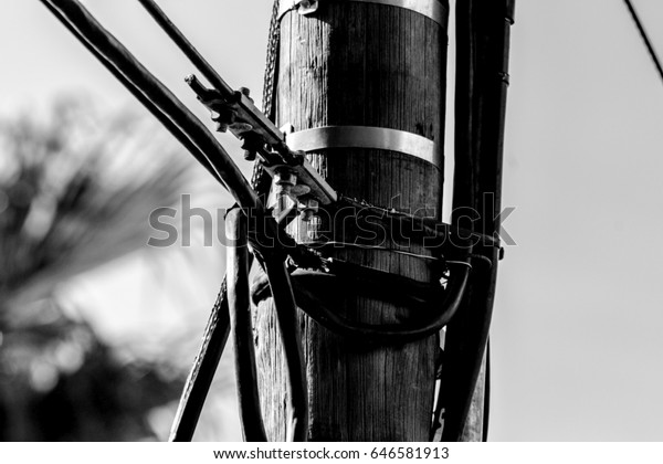 Power Cables on a wooden pole above a residential area.