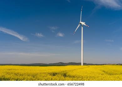 Power generating wind turbine standing in yellow rape field during springtime