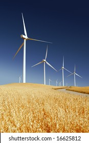 Power generating wind turbines on cultivated oat covered hills, Rio Vista California.