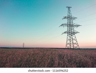 Power line in a wheat field during the morning sunrise