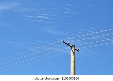 power line wires and a electric concrete post