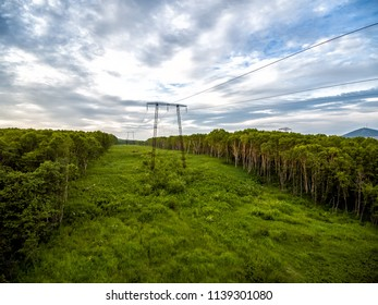Power lines in forest early morning aerial