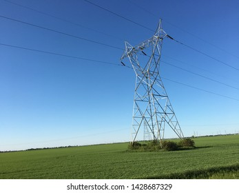 Power Lines in a green field