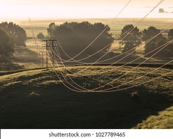 Power Lines held up by Pylons stretch across Farmland into the Foggy Field beyond