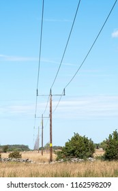 Power lines in a plain grassland with junipers