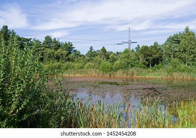 Power Lines: View to the hidden small cable terminal between the overhead high-voltage direct-current transmission line and the ground and sea cables of Konti-Skan 1 and 2 in Oesterby on Laesoe island