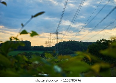 Power poles with lines across fields and forrest in sunset