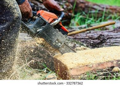 Power saws wood saws,Timber