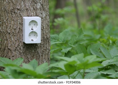 Power socket on tree trunk in the green forest. Symbol for green electricity.