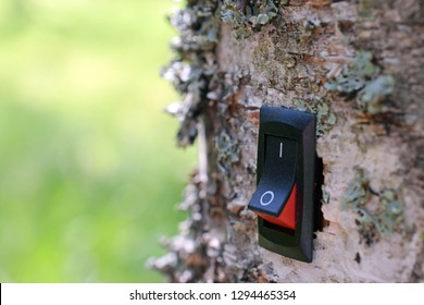 Power switch installed on tree. Concept of conservation, climate change, global warming, cleantech, green business and alternative energy. Copy space.