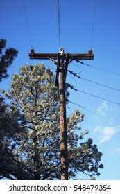 Power / Telegraph Pole with trees and blue sky in the background