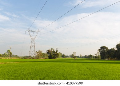 Power transmission towers in the rice fields. Power transmission towers from power plants through the rice fields.