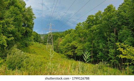 Powerline passing thru hill with trees overcast skies