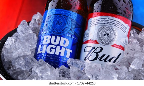 POZNAN, POL - APR 9, 2020: Bottles of Bud and Bud Light, popular American beers, produced by Anheuser-Busch.