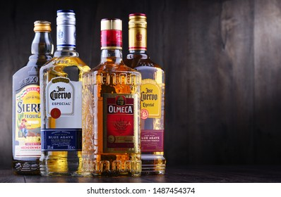POZNAN, POL - AUG 22, 2019: Bottles of best selling global tequila brands including Jose Cuervo, Olmeca and Sierra