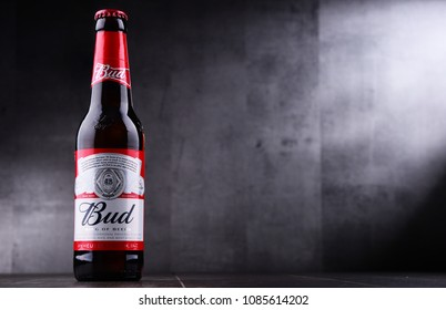 POZNAN, POL - MAY 3, 2018: Bottle of Bud beer, an American-style pale lager produced by Anheuser-Busch, introduced in St. Louis, Missouri in 1876.