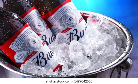 POZNAN, POL - SEP 4, 2019: Bottles of Bud beer, an American-style pale lager produced by Anheuser-Busch, introduced in St. Louis, Missouri in 1876.