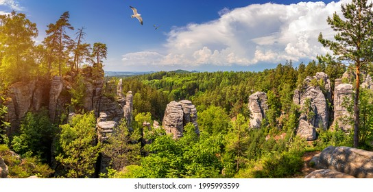 Prachov rocks (Prachovske skaly) in Cesky Raj region, Czech Republic. Sandstone rock formation in vibrant forest. Prachov Rocks, Czech: Prachovske skaly, in Bohemian Paradise, Czech Republic. - Shutterstock ID 1995993599