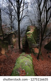 Prachov rocks in winter