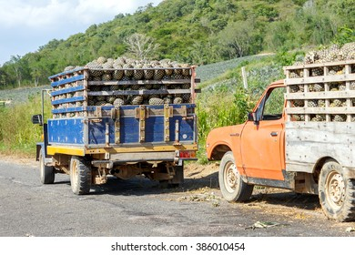 PRACHUAP KHIRI KHAN, THAILAND, November 2, 2011:Thai invention truck used to transport agricultural crops at KUI BURI THAILAND.