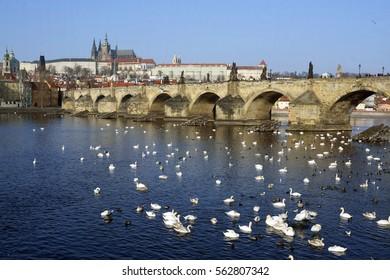 Prague castle with blue sky and Vltava river