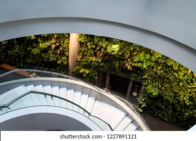 PRAGUE, CZECH REPUBLIC - MAY 19 2018: Vertical garden indoors, living green wall with flowers and plants under artificial lighting on May 19, 2018 in Prague, Czech Republic.