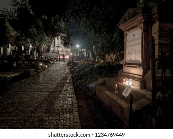 PRAGUE, CZECH REPUBLIC - NOVEMBER 2, 2018: Vysehrad cemetery on the grounds of Vysehrad fort. Pictured grove of czech scientist Jan Evangelista Purkyne.