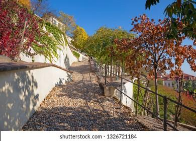 PRAGUE, CZECH REPUBLIC - OCTOBER 12, 2018: The Furstenberska gardens under the Castle in atumn.