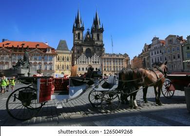 Prague, Czech Republic, September 18, 2018. Two brown horses waiting for a walk through the old town of Prague