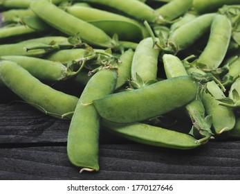 PRAGUE - JUNE 28, 2020: Pods of green peas on a old wooden surface close up. June 28, 2020 in Prague, Czech Republic.