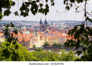 Prague in natural frame made from leaves - Czech Republic