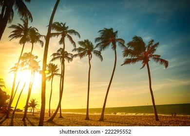 Praia de Cumbuco - Fortaleza, Ceara - Brazil