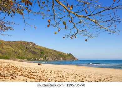PRAIA DO BONETE/ILHABELA/SAO PAULO/BRAZIL - AUGUST 20, 2018. Quadricycle in the distance in Bonete beach on a sunny day. Leaves on the ground and dry branches.