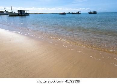 Praia do Forte - Bahia - Northeast of Brazil .
