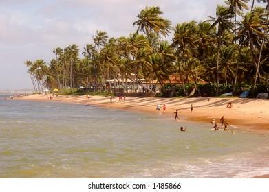 Praia do Forte Beach - Bahia - Brazil